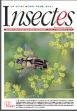 Insectes n° 167